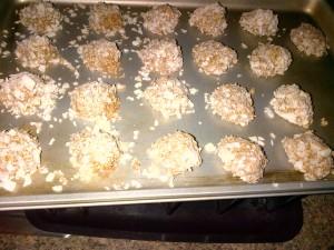 coconut port balls